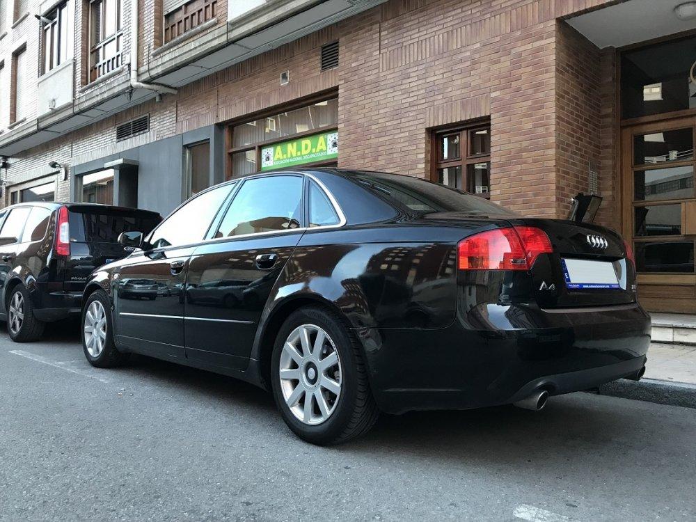 Audi culera sm.jpg