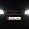 Perico_sm